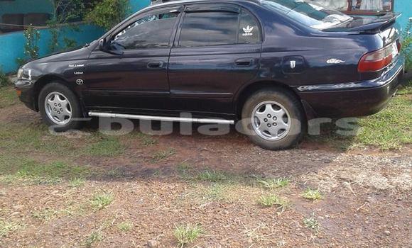 Buy Used Toyota Corona Blue Car in Lautoka in Western