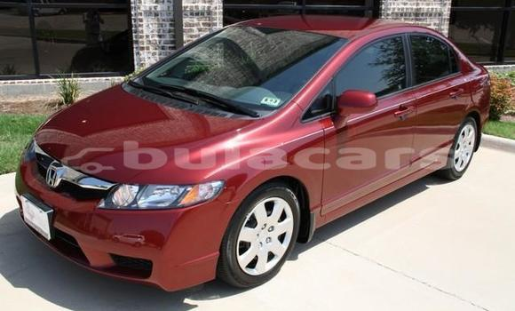 Buy New Honda Civic Red Car in Nadi in Western