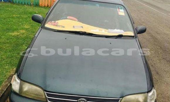 Buy Used Toyota Corona Other Car in Tubou in Eastern
