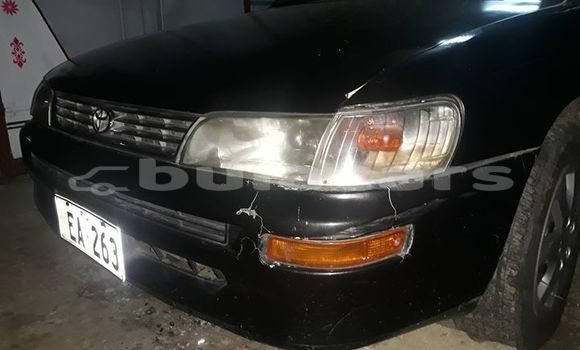 Buy Used Toyota Corolla Black Car in Suva in Central
