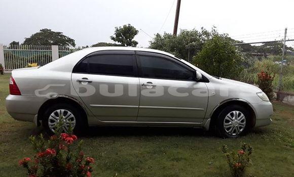 Buy Used Toyota Corolla Silver Car in Nadi in Western