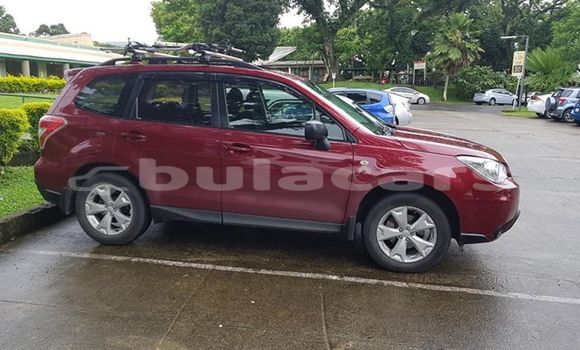 Buy Used Subaru Forester Red Car in Suva in Central