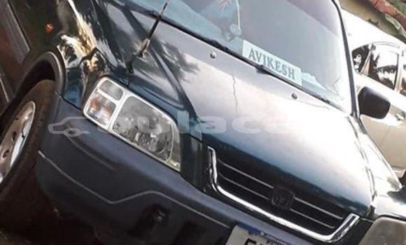 Buy Used Honda CRV Green Car in Nadi in Western