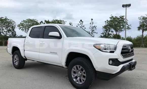 Buy Used Toyota Tacoma White Car in Deuba in Central