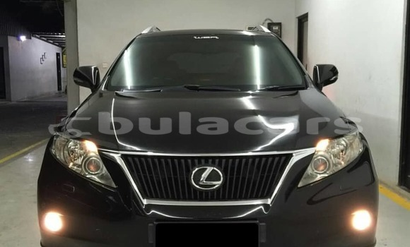Buy New Lexus RX 350 Black Car in Suva in Central