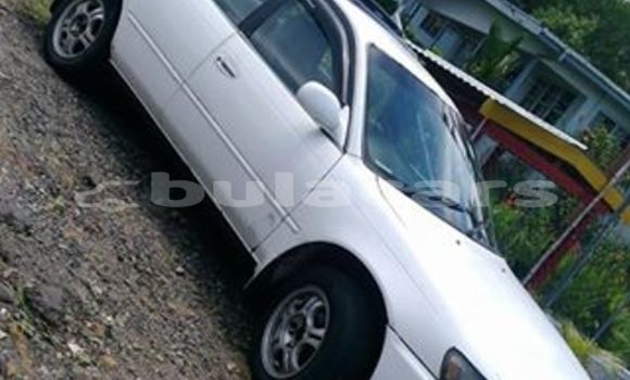 Buy Used Toyota Corolla Other Car in Sigatoka in Western