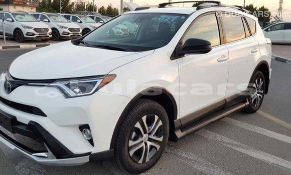 Buy Import Toyota RAV4 White Car in Import - Dubai in Central