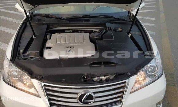 Buy Import Lexus 350 White Car in Import - Dubai in Central