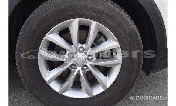 Buy Import Kia Sorento White Car in Import - Dubai in Central