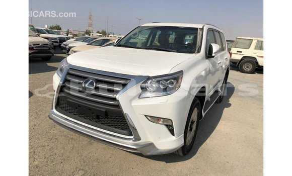 Buy Import Lexus GX White Car in Import - Dubai in Central