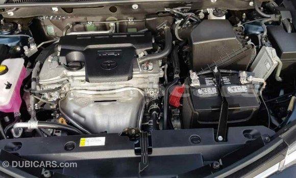 Buy Import Toyota RAV4 Black Car in Import - Dubai in Central