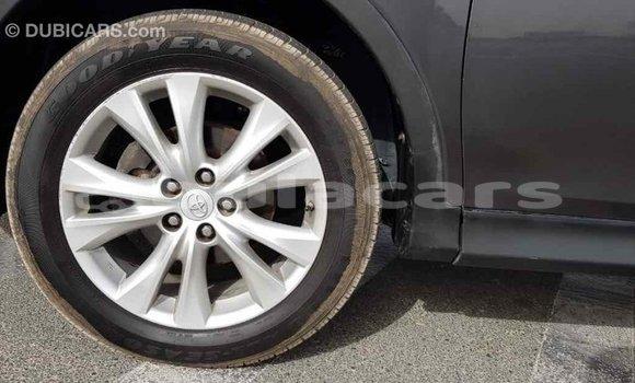 Buy Import Toyota RAV4 Grey Car in Import - Dubai in Central