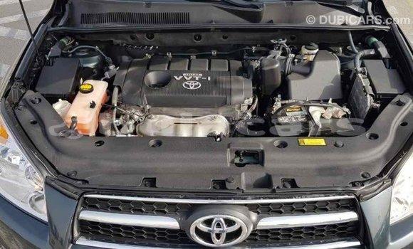 Buy Import Toyota RAV 4 Green Car in Import - Dubai in Central