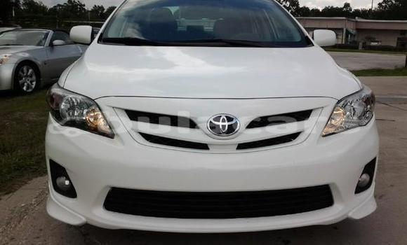 Buy Used Toyota Corolla Other Car in Suva in Central