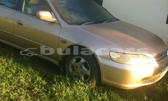 Buy Used Honda Accord Other Car in Lautoka in Western