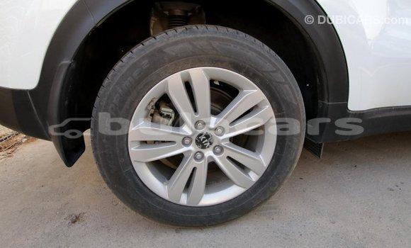 Buy Import Kia Sportage White Car in Import - Dubai in Central