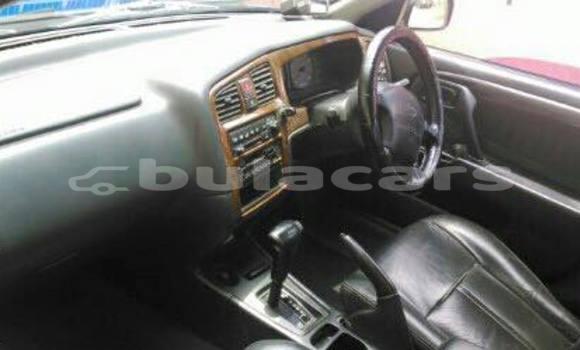 Buy Used Nissan Primera Other Car in Korokade in Northern