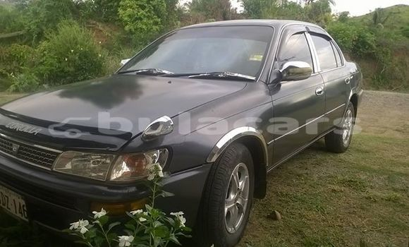 Buy Used Toyota Corolla Other Car in Sigatoka in Western