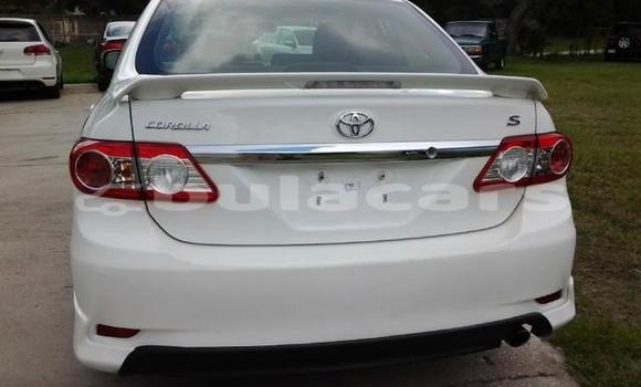 Buy Used Toyota Corolla Other Car in Nausori in Central