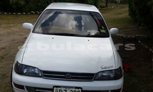 Buy Used Toyota Corona Other Car in Levuka in Eastern