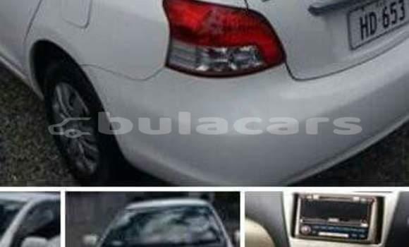 Buy Used Toyota Belta Other Car in Savusavu in Northern