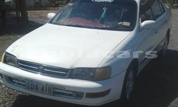 Buy Used Toyota Corona Other Car in Nadi in Western