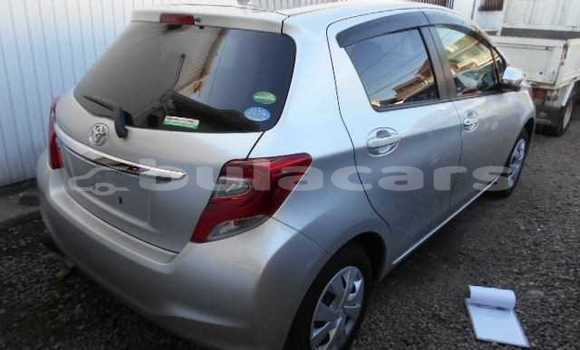 Buy Used Toyota Vitz Other Car in Lautoka in Western
