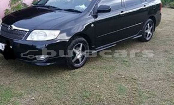 Buy Used Toyota Fielder Other Car in Labasa in Northern