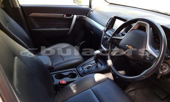 Buy Used Chevrolet Captiva Other Car in Navua in Central