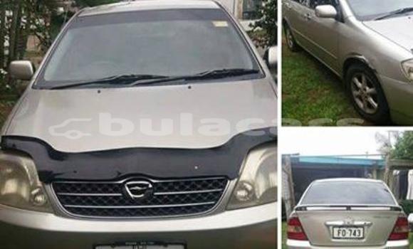 Buy Used Toyota Corolla Other Car in Savusavu in Northern