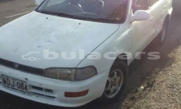 Buy Used Toyota Sprinter Other Car in Deuba in Central