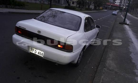 Buy Used Toyota Sprinter Other Car in Suva in Central