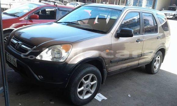 Buy Used Honda CRV Other Car in Suva in Central