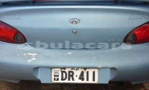Buy Used Hyundai Elantra Other Car in Vatukoula in Western