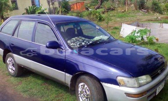 Buy Used Toyota Corolla Other Car in Tavua in Western