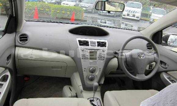 Buy Used Toyota Belta Other Car in Vatukoula in Western