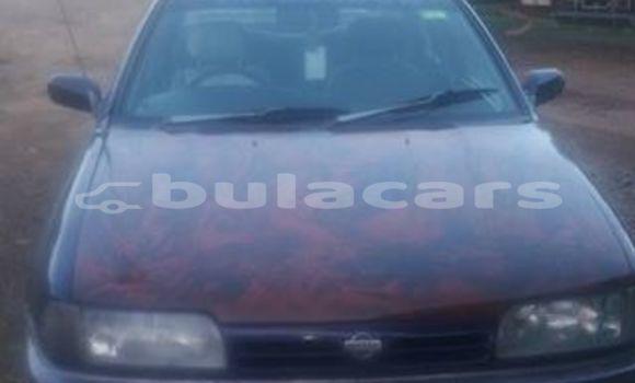 Buy Used Nissan Primera Other Car in Korovou in Central