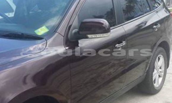 Buy Used Hyundai Santa Other Car in Sigatoka in Western
