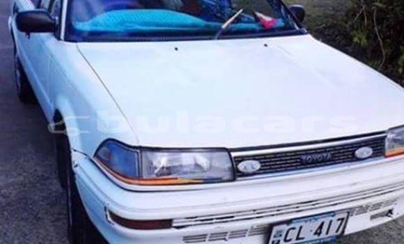 Buy Used Toyota Corolla Other Car in Malhaha in Eastern