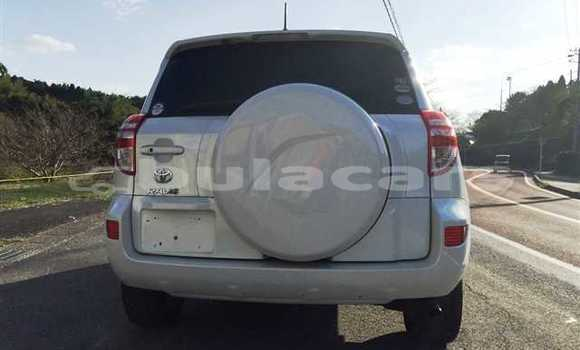 Buy Used Toyota RAV4 Other Car in Tavua in Western