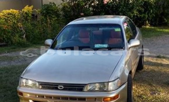 Buy Used Toyota Corolla Other Car in Labasa in Northern