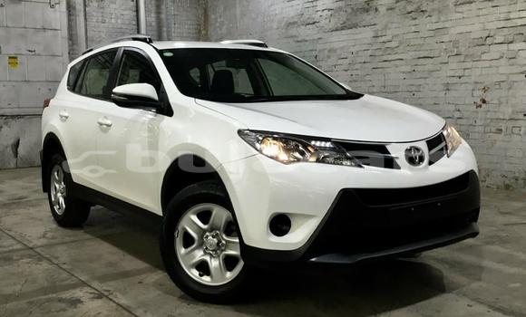 Buy Used Toyota RAV4 White Car in Suva in Central