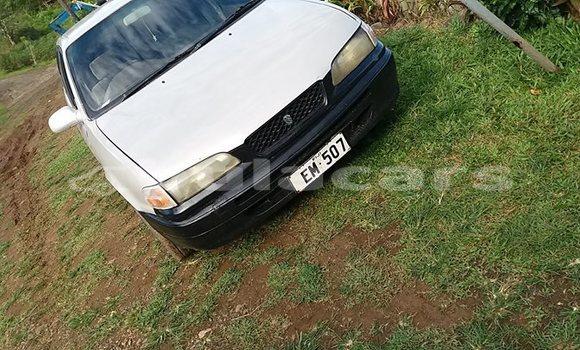 Buy Used Toyota Sprinter White Car in Suva in Central