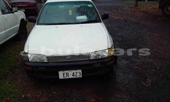 Buy Used Toyota Corolla White Car in Suva in Central
