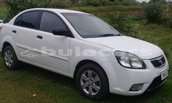 Buy Used Kia Rio White Car in Nausori in Central