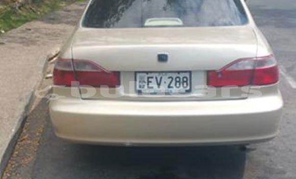 Buy Used Honda Accord Other Car in Lautoka in Western