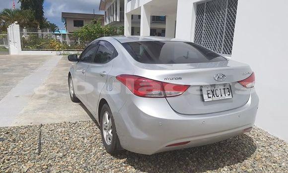 Buy Used Hyundai Elantra Silver Car in Suva in Central
