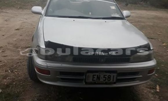Buy Used Toyota Sprinter Silver Car in Nadi in Western