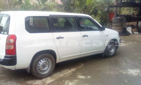 Buy Used Toyota Succeeed White Car in Nausori in Central