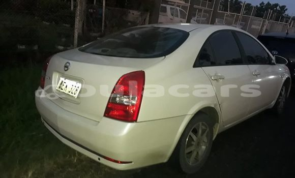 Buy Used Nissan Primera White Car in Nausori in Central